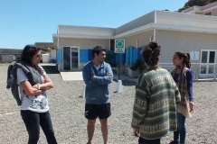 YouthActionNetChileQuintay(12)